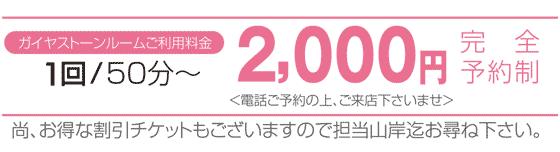 料金:2000円/回